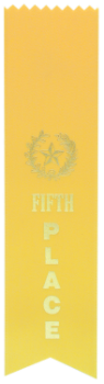 5TH PLACE YELLOW PINKED TOP RIBBON