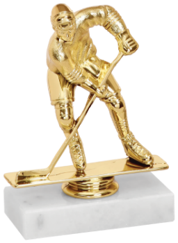 Hockey Trophy