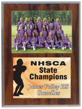 Cherry Finish Plaque with 4 x 6 Photo