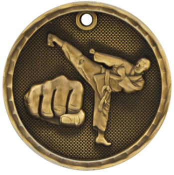 Martial Arts 3D Medal