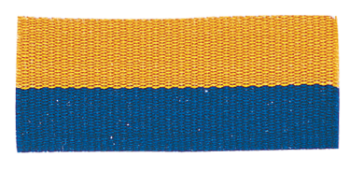 Blue/Gold Neck Ribbon with Snap Clip